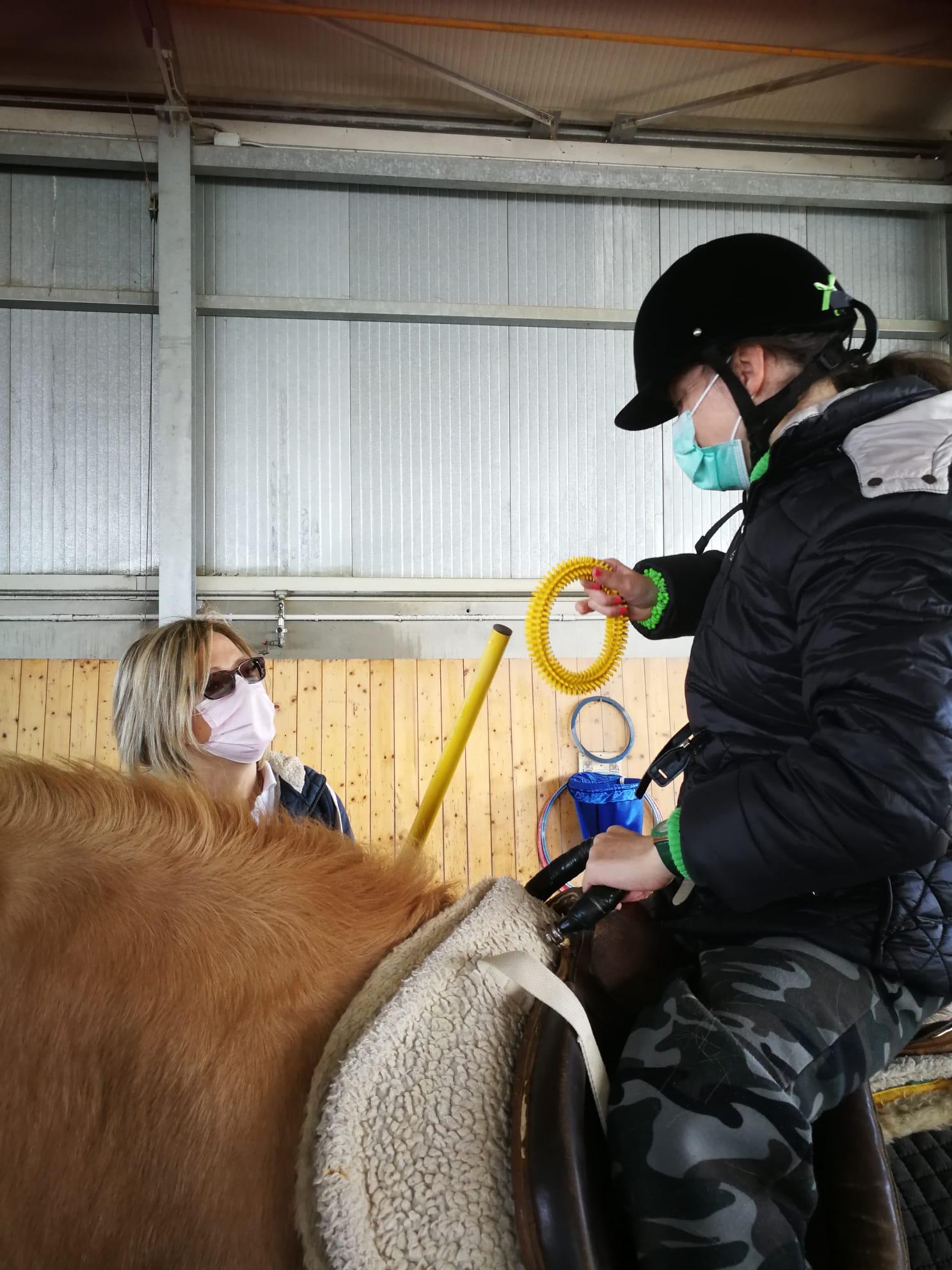 cavalli piccolo principe cso ippoterapia porcia